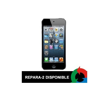 Cambio Display Ipod Touch 5 Negro