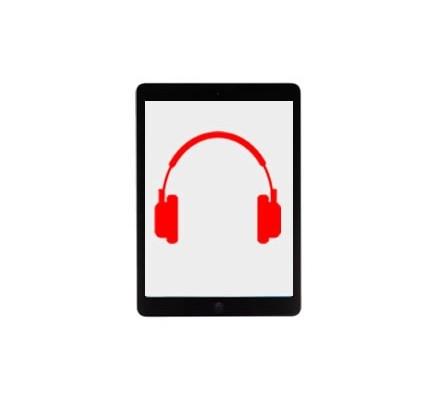 Cambio Entrada Auriculares Ipad Mini
